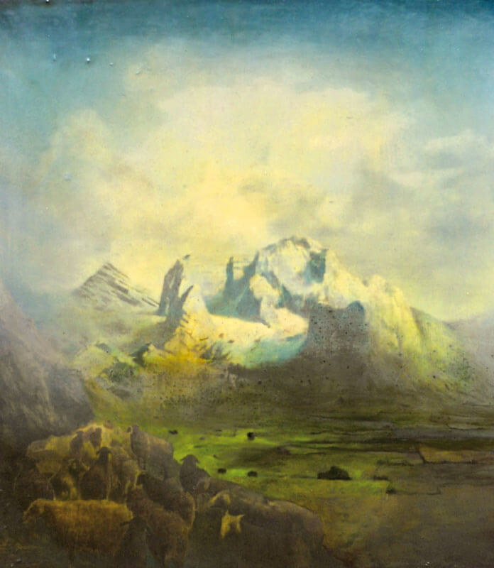 Sam Douglas, Wandering Flock, 2011